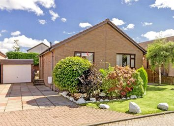 Thumbnail 2 bed bungalow for sale in Herd Green, Livingston