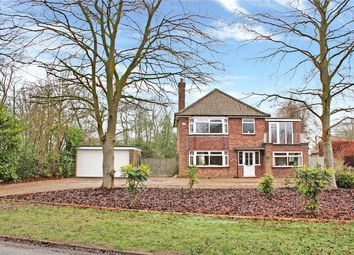 4 bed detached house for sale in Caistor Lane, Caistor St. Edmund, Norwich, Norfolk NR14