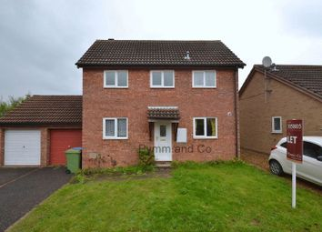 Thumbnail 3 bedroom link-detached house to rent in Stylman Road, Norwich