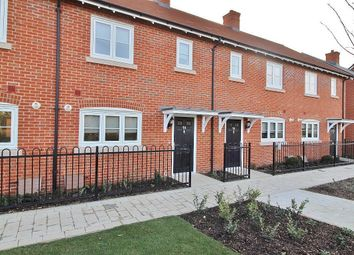 Thumbnail 3 bed terraced house to rent in Houghton Avenue, Waterlooville