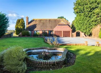 Thumbnail 4 bedroom detached bungalow for sale in Pond Farm Road, Borden, Sittingbourne, Kent
