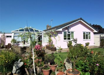 Thumbnail 4 bed detached bungalow for sale in Colyford, Colyton, Devon