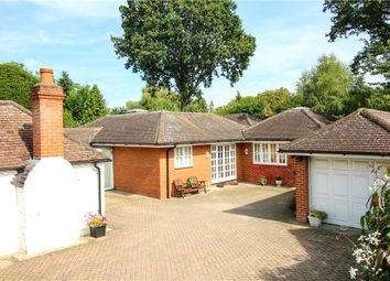 Thumbnail 3 bedroom detached house for sale in Kennel Ride, Ascot, Berkshire