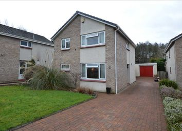 Thumbnail 4 bed detached house for sale in Barclay Road, Motherwell