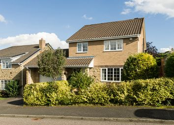 Thumbnail 4 bed detached house to rent in 21 Collingwood Drive, Hexham, Northumberland