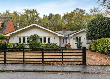 Thumbnail 4 bed detached bungalow for sale in Lake Road, Deepcut, Camberley, Surrey