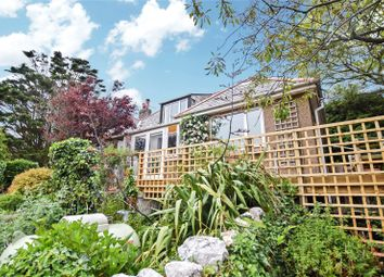 Thumbnail 4 bed detached house for sale in Forrabury, Boscastle