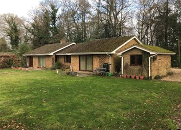 Thumbnail 4 bed bungalow to rent in The Avenue, Rowledge, Farnham, Surrey