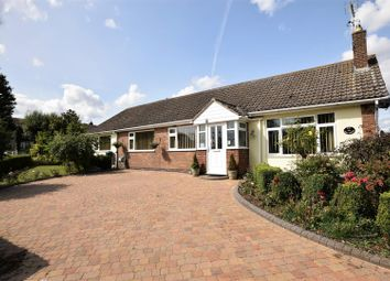 Thumbnail 4 bed detached bungalow for sale in Braunston Road, Oakham