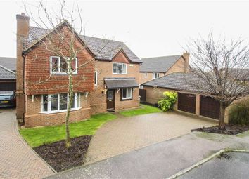 Thumbnail 4 bed detached house to rent in Cottage Common, Loughton, Milton Keynes