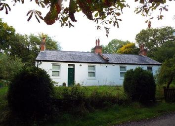 Thumbnail 4 bed bungalow for sale in Tupwood Scrubbs Road, Tupwood Lane, Caterham, Surrey