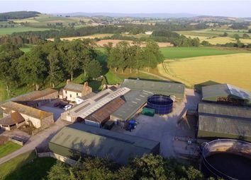 Thumbnail 8 bed property for sale in Ellerton Grange, Southwaite, Carlisle, Cumbria