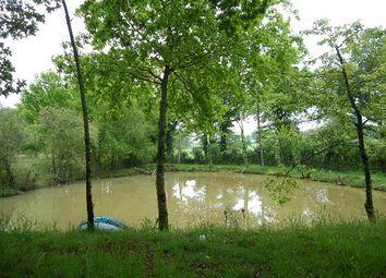 Thumbnail Property for sale in Poitou-Charentes, Charente, Pleuville