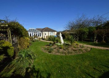 Thumbnail 2 bed detached bungalow for sale in Hull Road, Keyingham, East Yorkshire