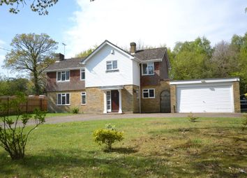 Thumbnail 4 bed detached house to rent in The Ridge, Little Baddow, Little Baddow