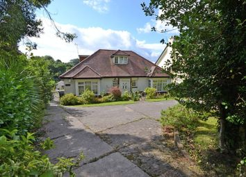 Thumbnail 4 bed detached house for sale in Spacious Detached Property, Risca Road, Newport