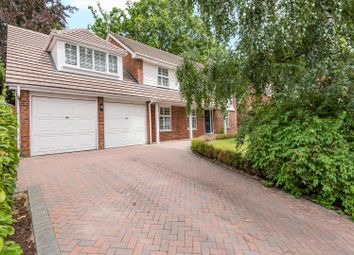 Thumbnail 5 bed detached house to rent in Hurstwood, Ascot, Berkshire