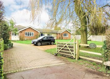 Thumbnail 5 bed detached bungalow for sale in Ginns Road, Stocking Pelham, Buntingford