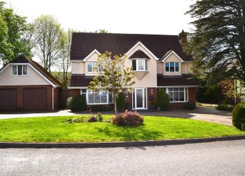 Thumbnail 4 bed detached house for sale in Clos Bryngwyn, Gorseinon, Swansea