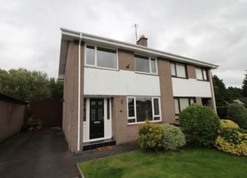 Thumbnail 3 bed semi-detached house for sale in Florence Court, Maze, Lisburn
