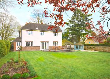 Thumbnail 4 bed detached house for sale in Andover Road, Winchester, Hampshire