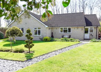 Thumbnail 3 bed detached bungalow for sale in New Cross, South Petherton