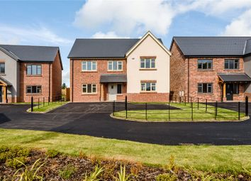 Thumbnail 4 bed detached house for sale in 5 Hawthorn Close, Harmer Hill, Shrewsbury, Shropshire