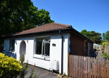 Thumbnail 4 bed detached bungalow to rent in Bursledon Road, Southampton