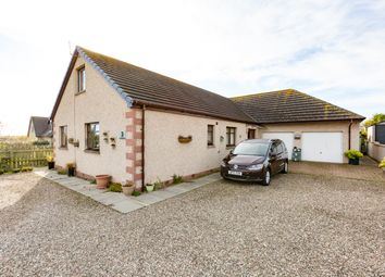 Thumbnail 4 bed detached bungalow for sale in Lochside Road, St Cyrus, Montrose