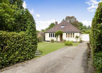 Thumbnail 4 bed bungalow for sale in Surrey, West Horsley, .