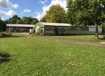 Thumbnail Land for sale in Lower Chase Road, Waltham Chase, Southampton