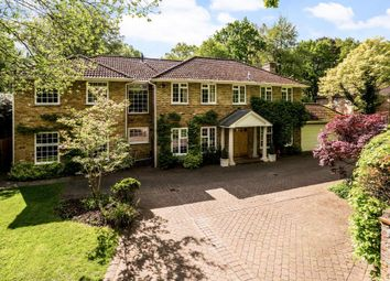 Thumbnail 6 bed detached house for sale in Pinecote Drive, Sunningdale, Ascot