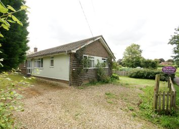 Thumbnail 3 bed detached bungalow for sale in Water Lane, Bishop's Sutton, Alresford, Hampshire