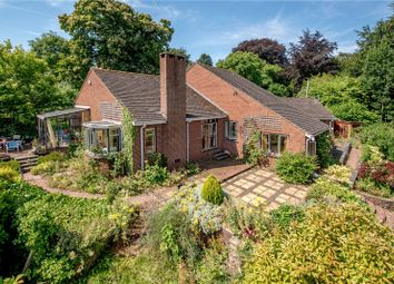 Thumbnail 4 bed bungalow for sale in Halse, Taunton, Somerset