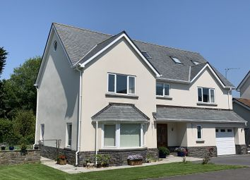 Thumbnail 6 bedroom detached house for sale in Burrows Close, Southgate, Swansea