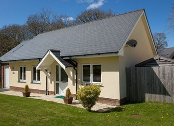 Thumbnail Detached bungalow for sale in Dolphin Court, New Quay