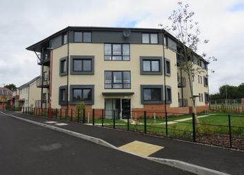 Thumbnail 2 bed flat for sale in Dovedale Road, Erdington, Birmingham