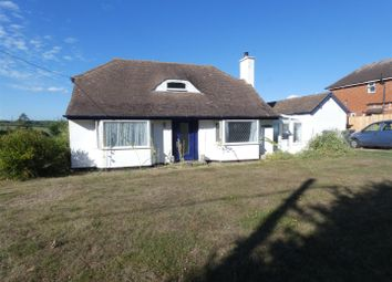 Thumbnail 2 bed detached bungalow to rent in Shalmsford Street, Chartham, Canterbury