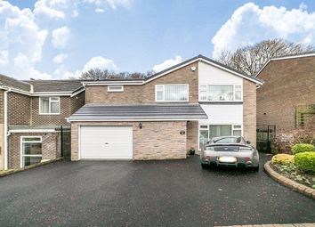 Thumbnail 4 bedroom detached house for sale in Paddock Wood, Prudhoe, Northumberland
