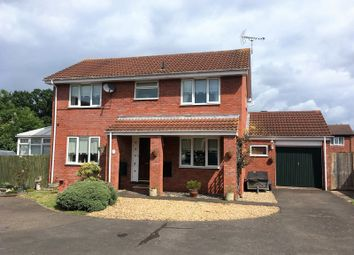 Thumbnail 4 bed detached house for sale in Sundew Close, Chestnut Drive, Taunton - Detached Family Home, Conservatory, Large Garage