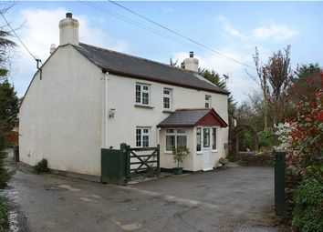 Thumbnail 4 bed detached house for sale in Holsworthy