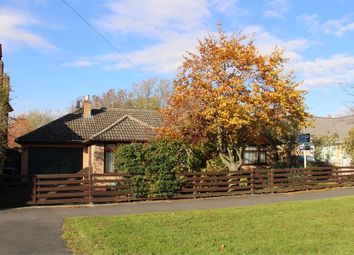 Thumbnail 4 bed detached bungalow for sale in South Avenue, Ullesthorpe, Lutterworth