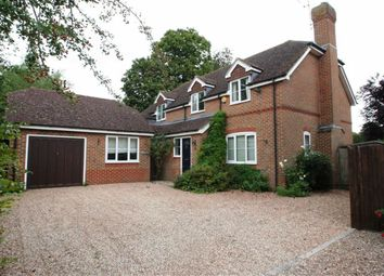 Thumbnail 4 bed detached house to rent in High Street, Compton, Newbury