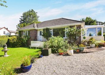 Thumbnail 3 bed bungalow for sale in Totnes Road, Newton Abbot