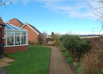 Thumbnail 3 bed detached bungalow for sale in Holmestead Close, Costock
