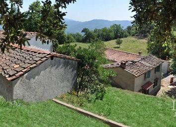 Thumbnail Farm for sale in Pescia, Pistoia, Toscana