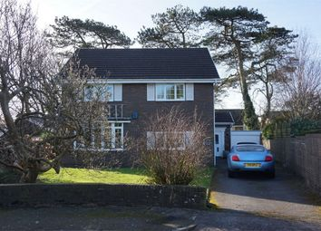Thumbnail 4 bed detached house for sale in Northlands Park, Bishopston, Swansea