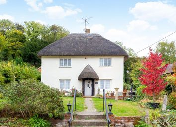 Thumbnail 3 bed cottage for sale in The Green, Pitton, Salisbury