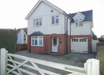 Thumbnail 4 bed detached house to rent in Halstead Road, Colchester, Essex