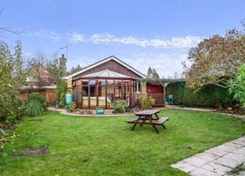 Thumbnail 4 bed bungalow for sale in Whitenap Close, Romsey